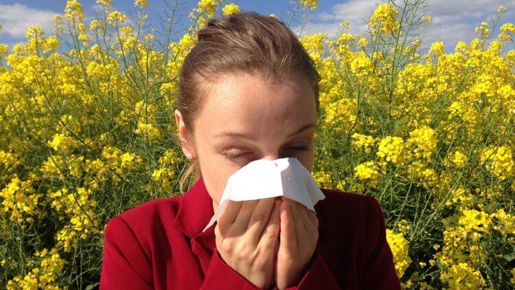 Alergia de primavera, cómo evitarla y cómo tratarla