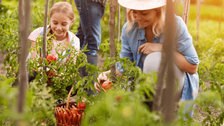 Qué comer en primavera para aumentar el bienestar